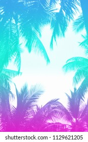 80s/90s jungle style background with silhouettes of palm tree leaves that have a turquoise and pink neon gradient