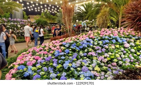 The 80th Flowers Festival of Joinville that takes place from November 13 to 18, 2018 in Joinville, SC,, Brazil