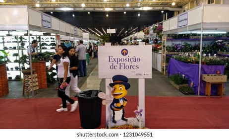 "The 80th Flowers Festival of Joinville that takes place from November 13 to 18, 2018 in Joinville, SC,, Brazi, wirh plate written ""flower exhibition"" in Portuguese"