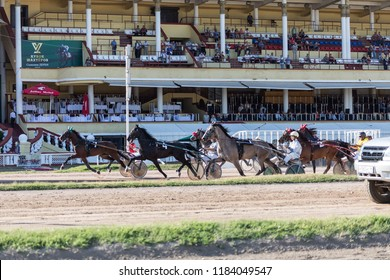 "8.26.2018 Russia, Moscow, Central Moscow hippodrome. Tests of horses of trotters on the prize ""Cup of Miners"". The start of the Horse harnessed in a carriage trots against the background of the buildi"