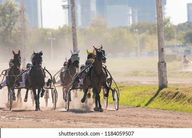 "8.26.2018 Russia, Moscow, Central Moscow hippodrome. Tests of horses of trotters on the prize ""Cup of Miners"". Many horses trot kicking up dust from hoofs and wheels. Front view"