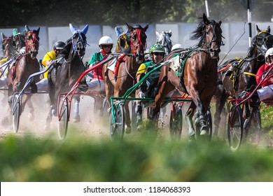 "8.26.2018 Russia, Moscow, Central Moscow hippodrome. Tests of horses of trotters on the prize ""Cup of Miners"". The group of horses is harnessed in a carriage trot in turn. Front view."