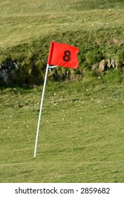 The 8th pin on a small golf course green.