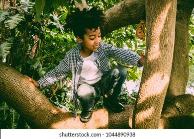 8-year-old color kid with rasta hair plays happy climbing up an avocado tree