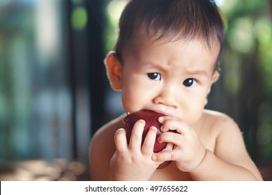 9 months Asian baby eating an apple