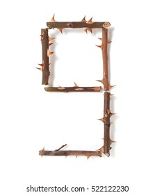 9 nine. set of numbers with a unique design of the stems of roses with large spikes on a white background