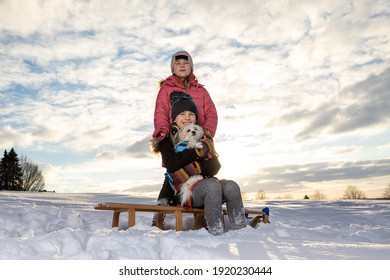9 year old identical twins having fun with their dog a Chihuahua Powderpuff Mix.  Kids sitting on a sleigh during sunset on a winter day.