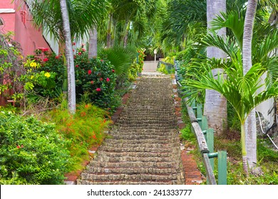 The 99 steps in Charlotte Amalie, St Thomas, US VI. The picturesque stairways with flowers and palm trees on both sides.