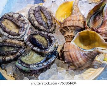 Abalone and Japanese whelk  in wet market in Hakodate Hokkaido Japan