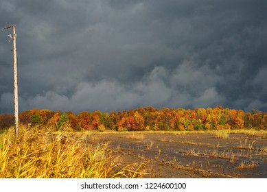 Abandonded parking lot under a dark sky with autumn colors