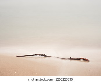 Abandoned beach with branch on sand and sea water during winter day. Summertime landscapes concept.