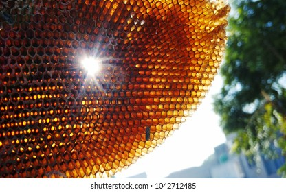 Abandoned Beehive sun behind it