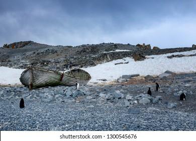 Abandoned boat and ringneck penguins at Whaler's Village in Deception Island, Antarctica