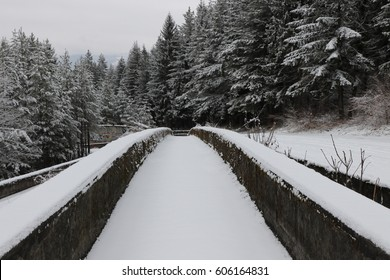 Abandoned Bobsleigh track and luge track on Mount Trebevic