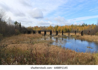 Abandoned bridge posts in the distance, and fall colors are reflected in a river in Wisconsin.