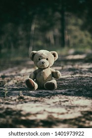 abandoned brown teddy bear sitting in the middle of the forest in the evening,  concept of loneliness