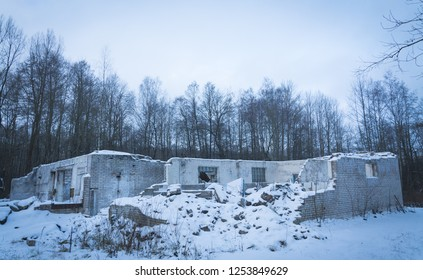 abandoned building ruins in the forest