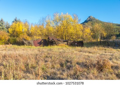 Abandoned cabin in front of golden aspen leaves in Golden Gate Canyon State Park, Colroado, USA.