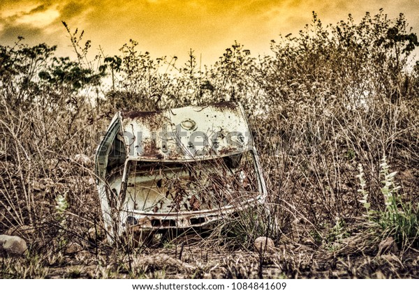 abandoned car in the nature