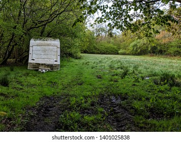 Abandoned Caravan found on a nature walk
