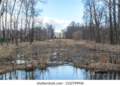 An abandoned cascade of water bodies and wetlands on the territory of the manor Khrapovitsky in Muromtsevo