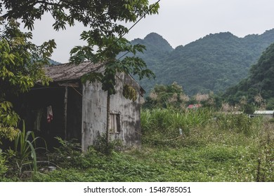 An abandoned concrete shack on Cat Ba Island which is regularly visited by boat tours around Ha Long Bay shot on a bright day in Autumn