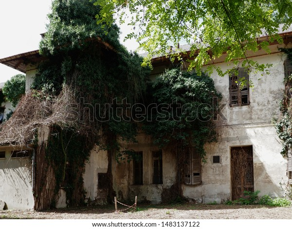 Abandoned and damaged building. The vegetation is covering the building.