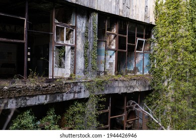 Abandoned destroyed building after the war, ruined house with broken walls and windows, paint peeled off, walls overgrown with trees and leaves. Forsaken city after hostilities, destruction