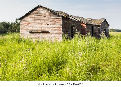 Abandoned farm buildings with weathered wood