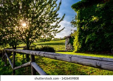 An abandoned farm in the fields of Friuli Venezia-Giulia