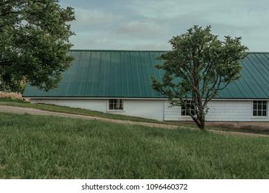 Abandoned Farm on a Sunny Day