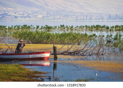 Abandoned fishing boat by the lake surrounded with bulrush