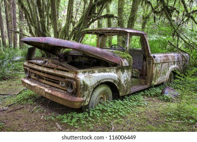 Abandoned Ford pick up truck, from 1963, decaying in the middle of the green rain forest in Olympic National Park, Washington, USA