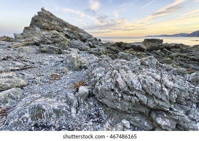 Abandoned Fur Seal Colony, Kaikoura Coast, South Island, New Zealand