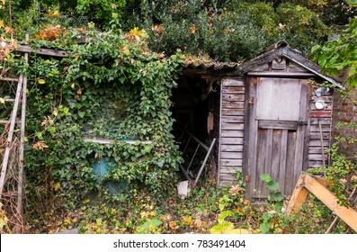 Abandoned garden shed background