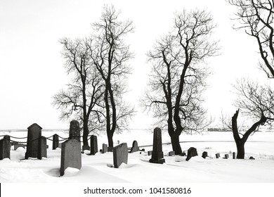 Abandoned graveyard dressed in snow with bare trees a foggy cold winter day, in black and white tones.