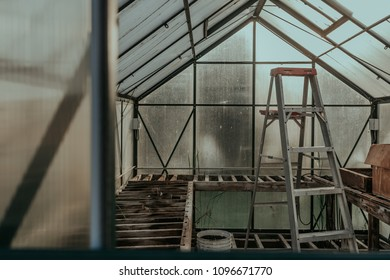 Abandoned Greenhouse in the Sunlight