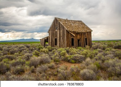 An abandoned homestead building surrounded by sage brush on the desert near Silver Lake, Oregon.