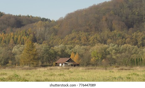 abandoned house in autumn forest,