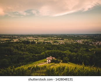 Abandoned house surrounded by vineyard, green hills sunset, Friuli, Italy