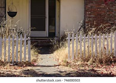 Abandoned House and Yard