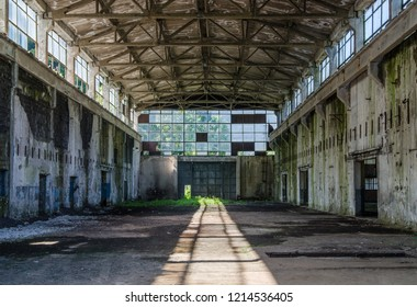 Abandoned industrial hall with morning sunshine - vegetation growing inside, plaster falling from the rotten walls