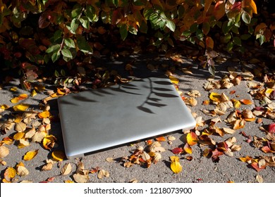 abandoned laptop in the street