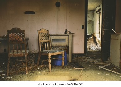 Abandoned Living Room with Owl