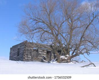 Abandoned Log Cabin in Ontario Canada