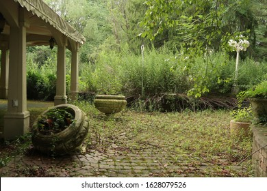 Abandoned and neglected garden with part of a structure visible on the left. Summer season.
