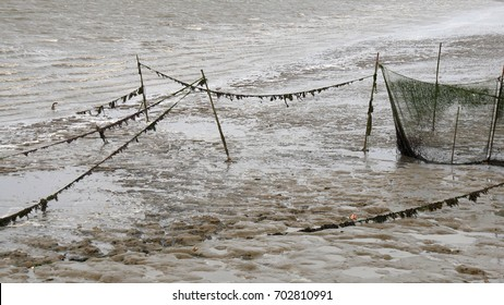 abandoned net fish in the Wadden sea at low tide, Frisian islands, Holland