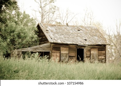Abandoned old farm house in overgrown yard