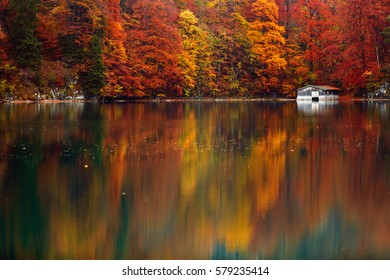 Abandoned old fisherman's hut on a lake shore in autumn. Vibrant reflection on the water. Lots of copy space for text below