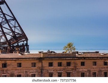 abandoned old port areal in Trieste, Italy with rusted cranes and trees on the rooftop